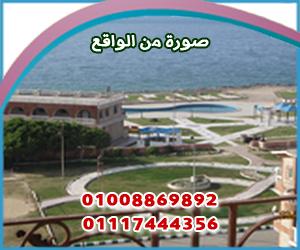 الشركة المصرية للتنمية وادارة المشروعات